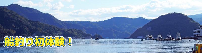 港から江の浦湾