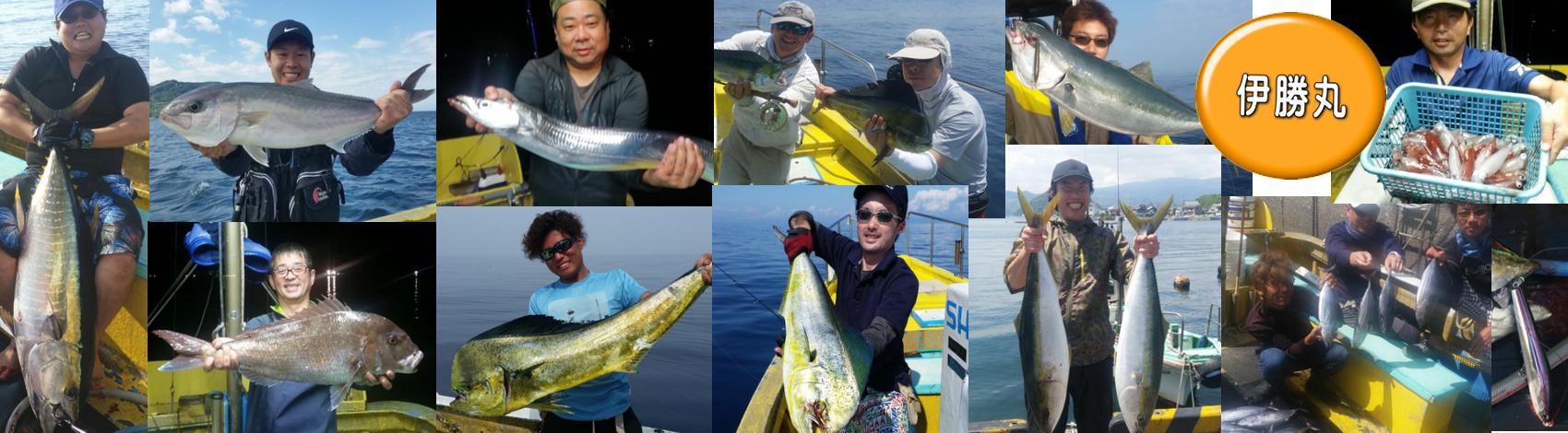 夏の釣りもの